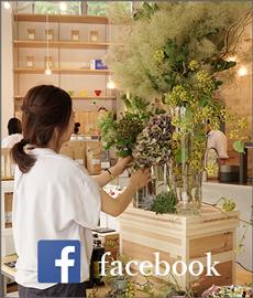 グラウンド facebook