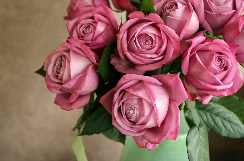バラを結婚祝いに贈る