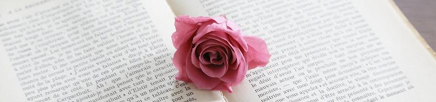 プリザ バラ 花の種類