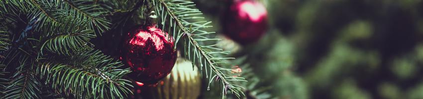クリスマス プリザーブドフラワー